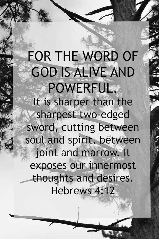 Hebrews4-12