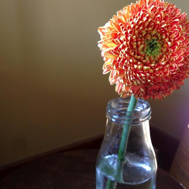orange-flower-vase