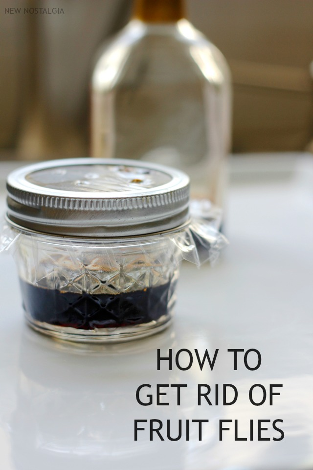 How-to-get-rid-of-fruit-flies