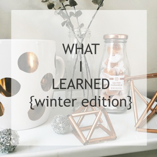 What-I-Learned-This Winter