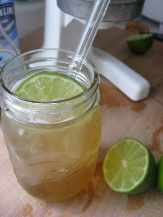 Healthy Fresh Lime Soda + 10 Slow Living Summer Recipes From New Nostalgia