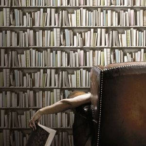 Retro Bibliotheque Wallpaper by Koziel