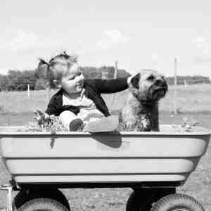 Toddler and dog in a wheelbarrow, black and white photography by Amy Treasure-http://mrandmrstplusthree.com