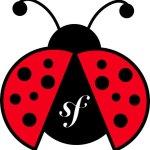 Ladybug Bundle