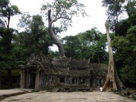 Vistas del Templo con la naturaleza