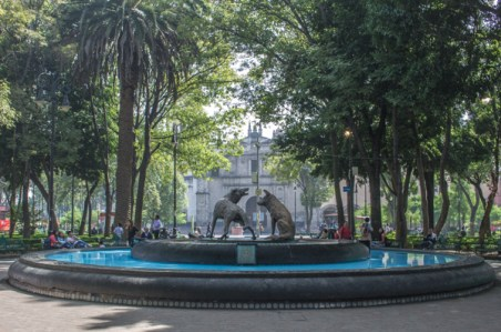 10ThingsMexicoCity-51