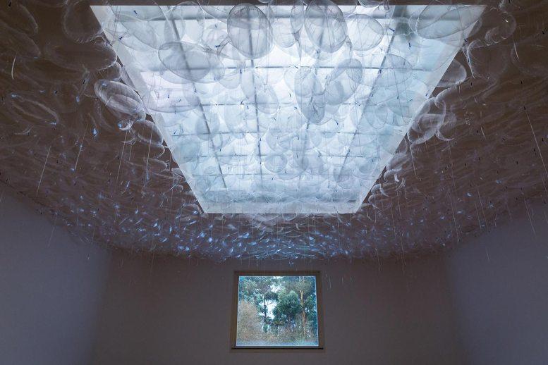 Exhibition at Serralves Museum, Porto