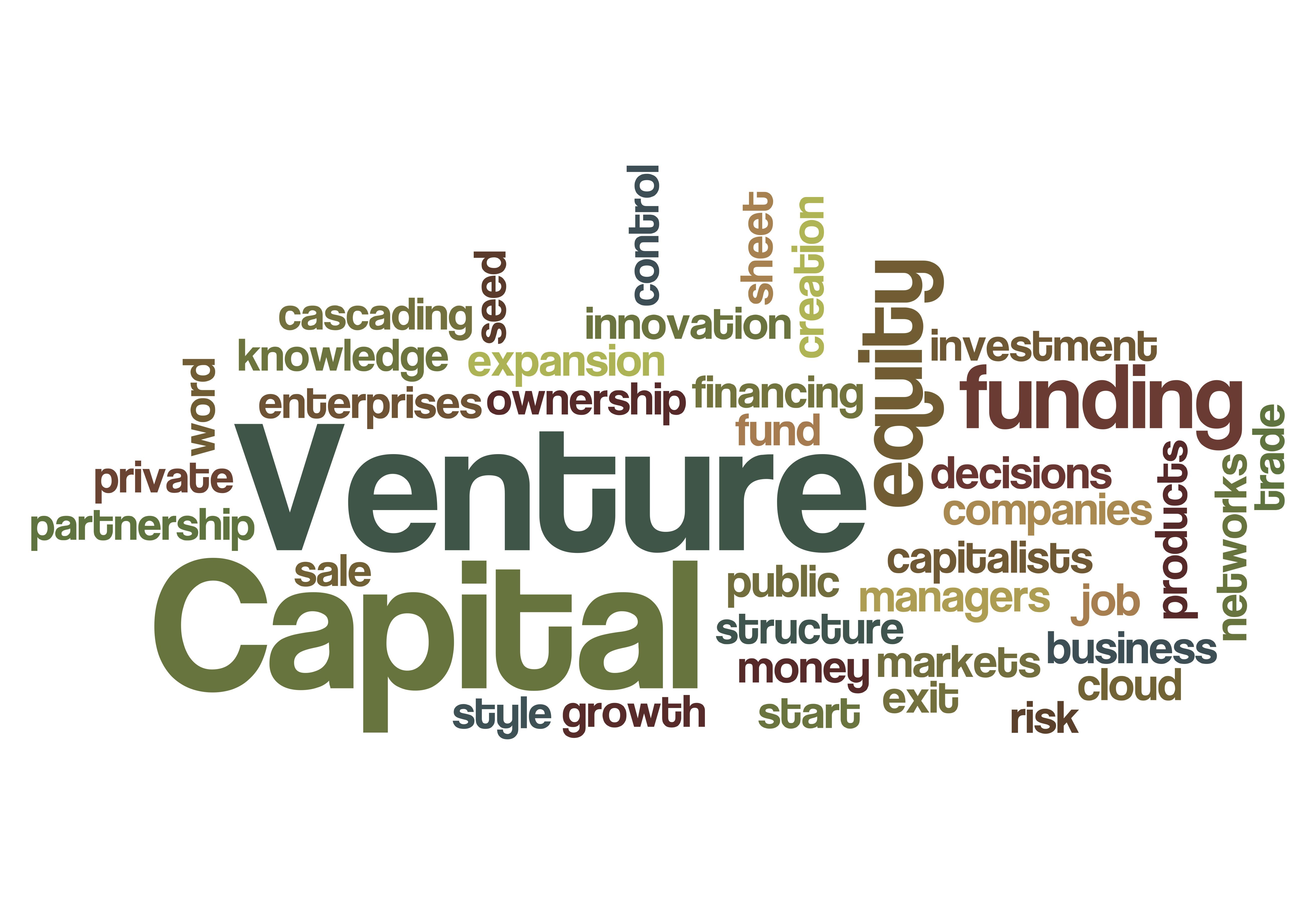 eBook: Demystifying Venture Capital