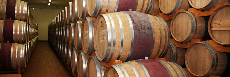 Anagni Excelsa - Botti di Vino Cesanese
