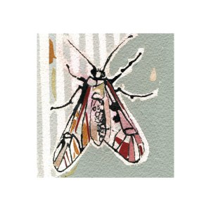 120-papillon-20x20