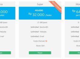 Bingung Pilih Web Hosting Gratis atau Berbayar