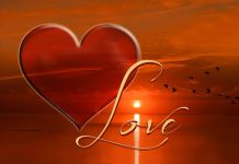 HARAPAN, Cinta