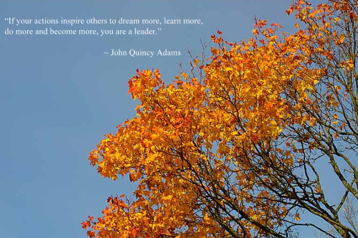 yellow autumn leaves + quote