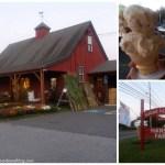 Hanson Farm + Sugar Hill Dairy in Bridgewater, MA