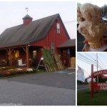 Hanson Farm + Sugar Hill Dairy in Bridgewater, MA