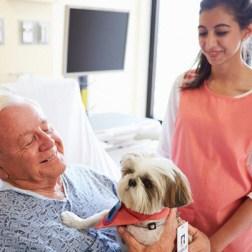 """""""Una visita de su mascota trae algo de normalidad a la vida del paciente"""""""
