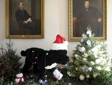 Réplica de Bo en la Casa Blanca, Navidad 2012