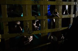 """Todavía siete centros penitenciarios de los 93 que existían en el país están bajo el antiguo régimen controlados por los """"pranes"""" aunque, según Varela, se encuentran ya en """"transición"""" Foto: EFE"""