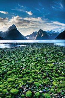 La mayor reserva neozelandesa protege un paisaje de fiordos, glaciares y picos que superan los 2.500 m de altitud. La puerta de entrada a este paraíso de la Isla Sur es la localidad de Te Anau, que ofrece desde cruceros en barco por el lago homónimo hasta trekkings que cruzan bosques donde viven especies únicas, como el takahe, un ave no voladora que se creía extinguida/ Foto: Christian Riefenberg