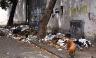 Esquinas de Caracas llenas de basura / Foto: Lisandro Casaña