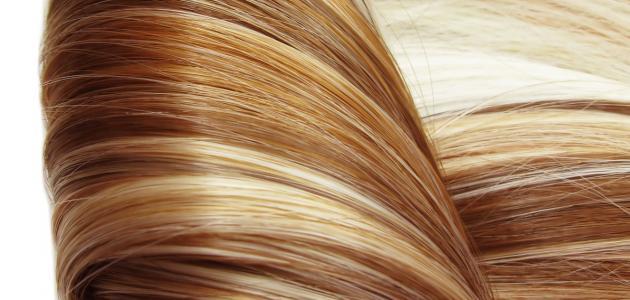 خلطات رائعة لتكثيف الشعر