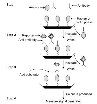 Le schéma montre un immunodosage en phase solide compétitif typique couramment utilisé pour détecter les drogues d'abus. C'est un format hétérogène utilisant des étapes de lavage pour éliminer les matériaux qui ne se lient pas immunologiquement. Le signal est inversement proportionnel à la concentration de médicament libre dans l'échantillon.