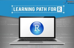 Advanced Learning Path – Now Learn R with Best Online Resources