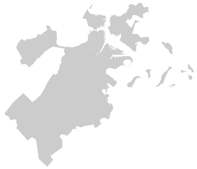 boston map in d3