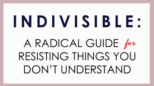 Indivisible Guide: What Few Are Pointing Out