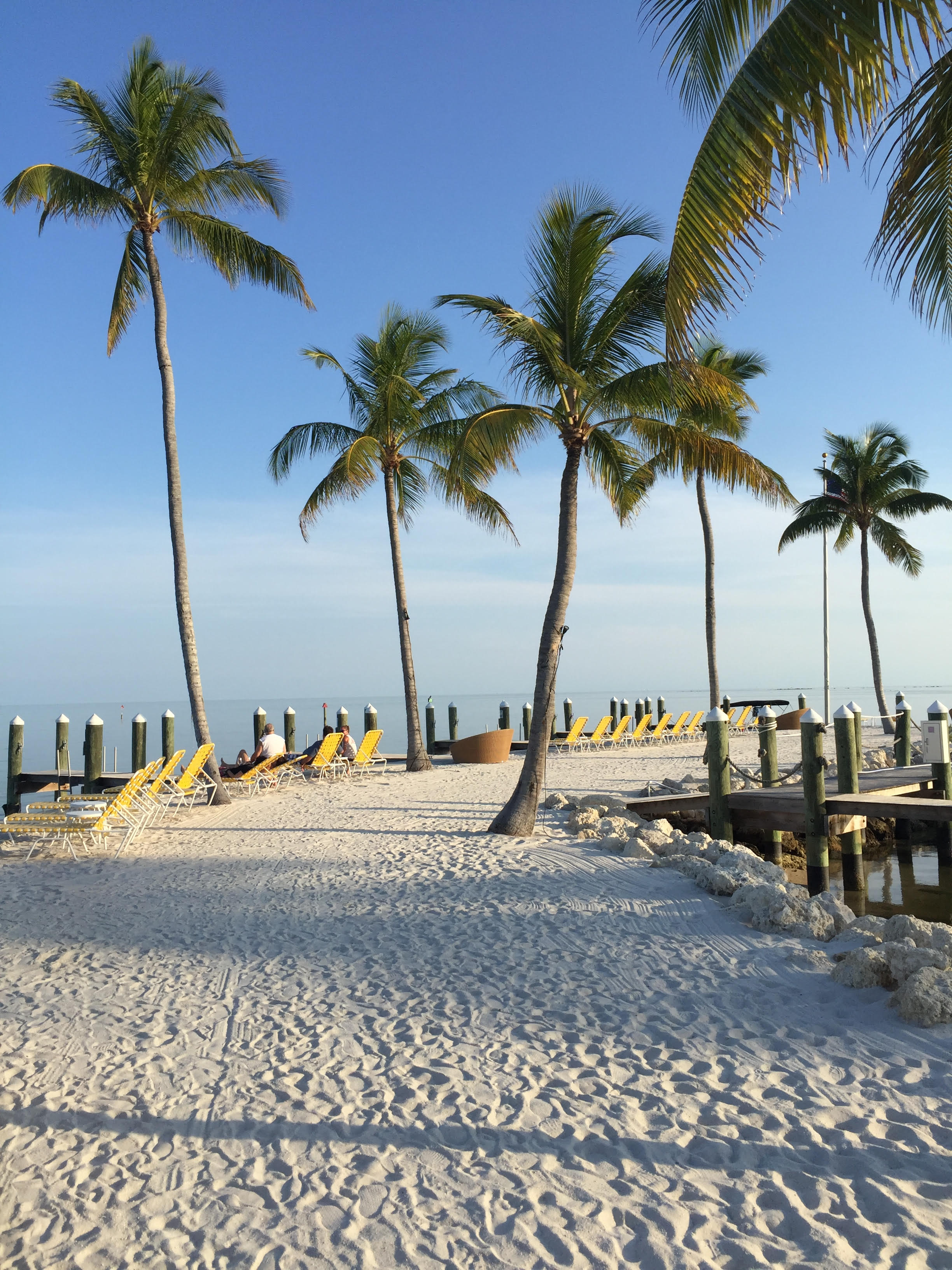 Islamorada fishing source islamorada florida keys for Fishing resorts in florida