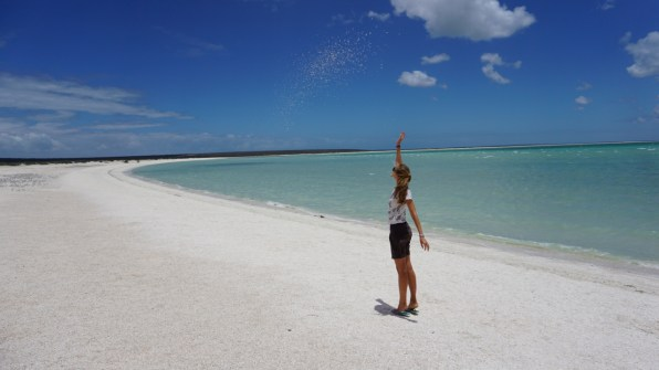 Other areas of Shark Bay are also gorgeous - like this white beach of tiny white shells