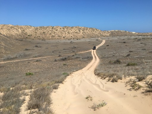 We explored some station roads (=roads for goat farms) across the dunes