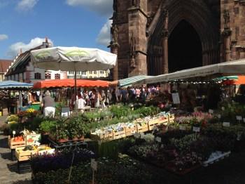 Um pouco da feira e parte da Catedral ao fundo...
