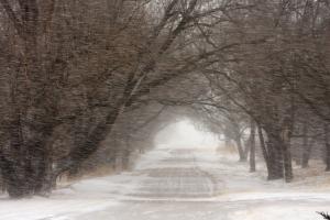 blizzard scene Force Majeure