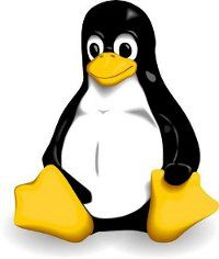 Cheap Unmanaged Linux VPS Hosting
