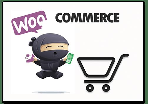 Woocommerce Integration with Ali Dropship WordPress Plugin