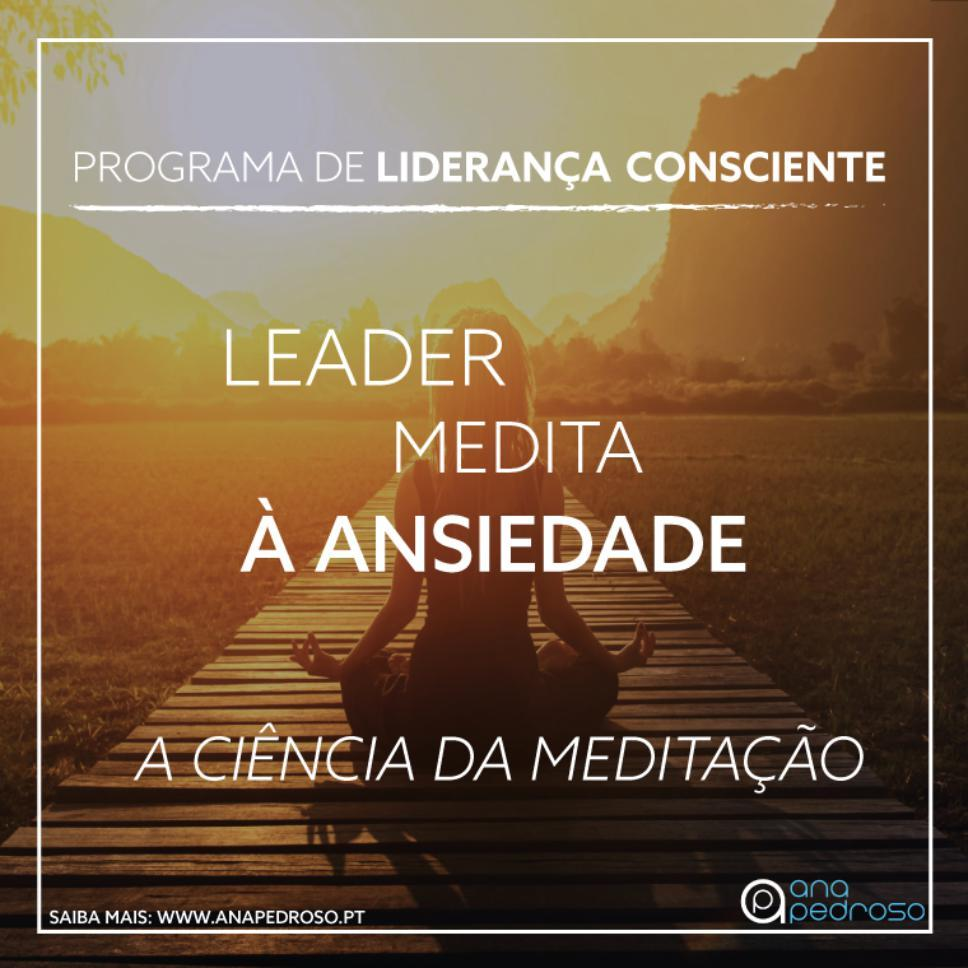 Leader Medita - Curso Ana Pedroso dia 2 - 2