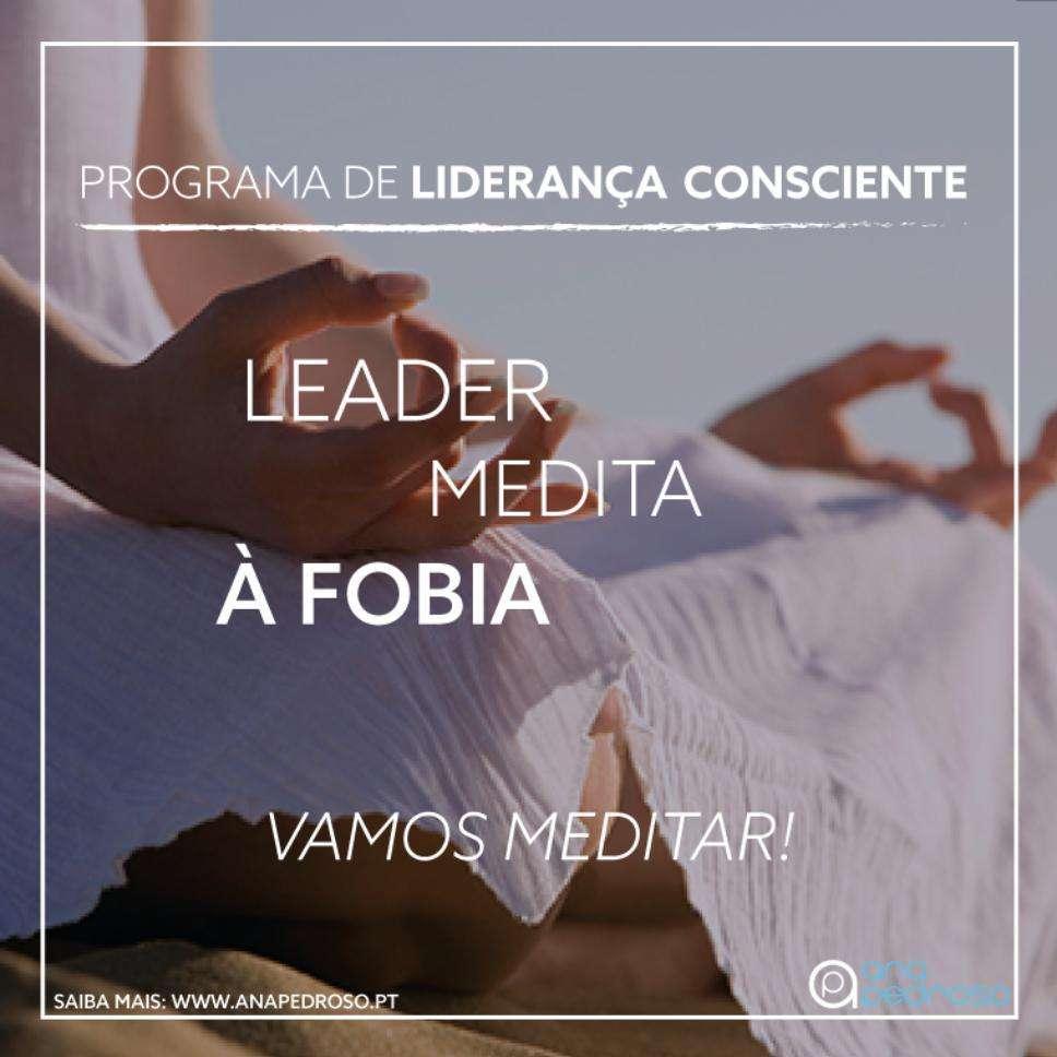 Leader Medita - Curso Ana Pedroso dia 7 -3