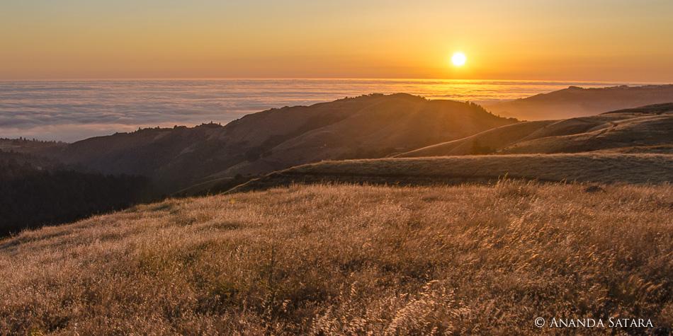 Sun & Fog Dec 2012