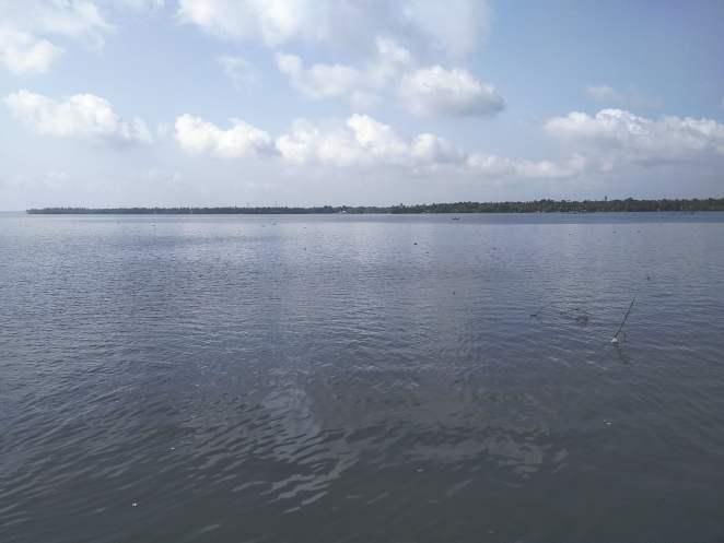 Cochin Backwaters
