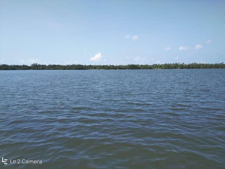 Madu river boat sanctuary bentota srilanka