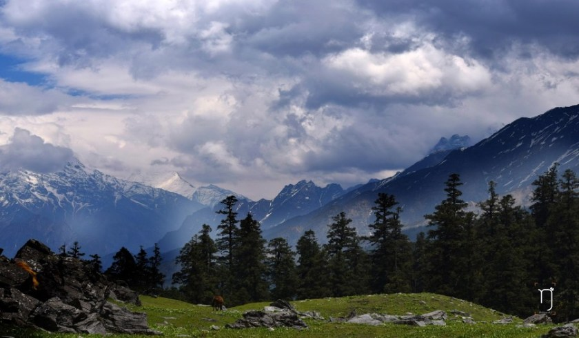 Kuari pass trek himalayas