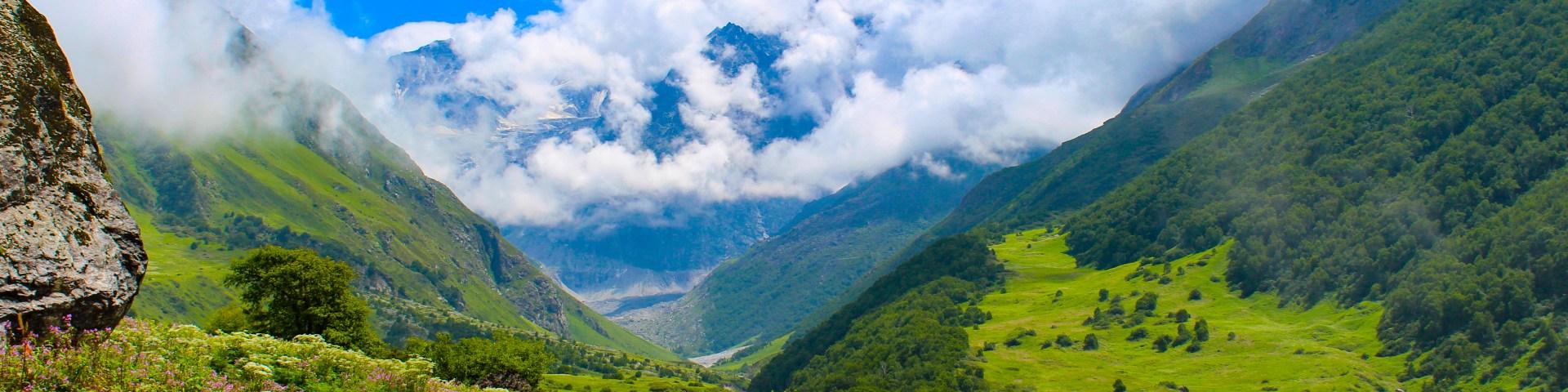 valley of flowers top himalayan treks
