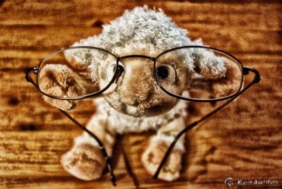 Mr. Sheep mit neuer nitramischer Sehstärke