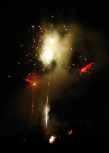 Feuerwerksphoenix 2009
