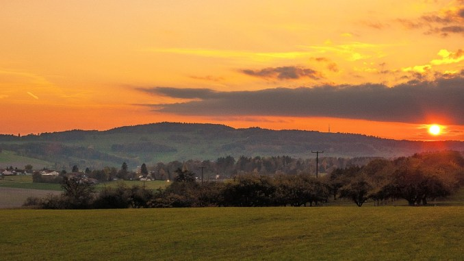 Abendsonne am 25. Oktober 2015 bei Baltersweil (Foto: Salome Leinarkunion)