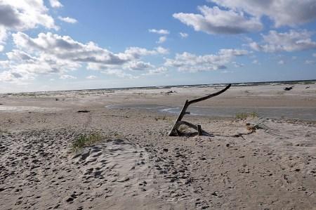 Endloser Sandstrand! (Foto: Martin Dühning)