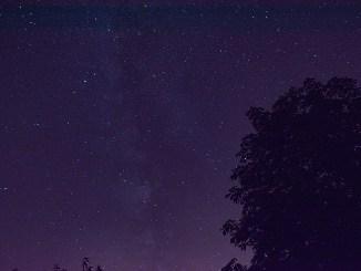 Eine Sternennacht im August (Foto: Martin Dühning)