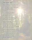 Beltaine Lyrics