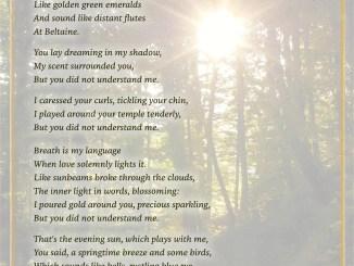 The Elder Tree - Visual Poem (Text und Grafik: Martin Dühning)